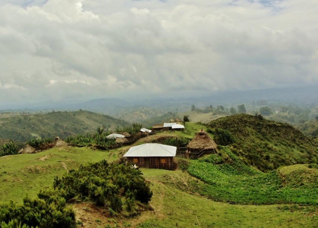 The Village of Wonchi