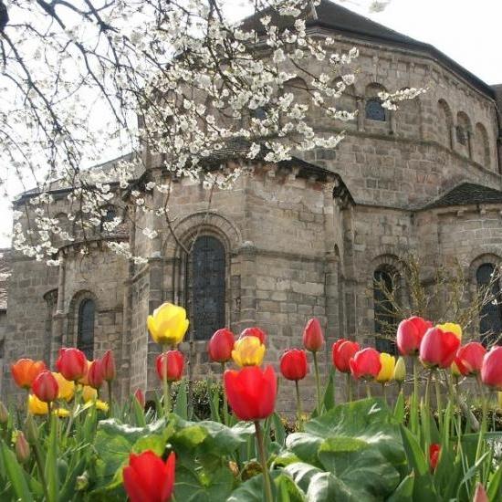 0336_abside_tulipes.jpg