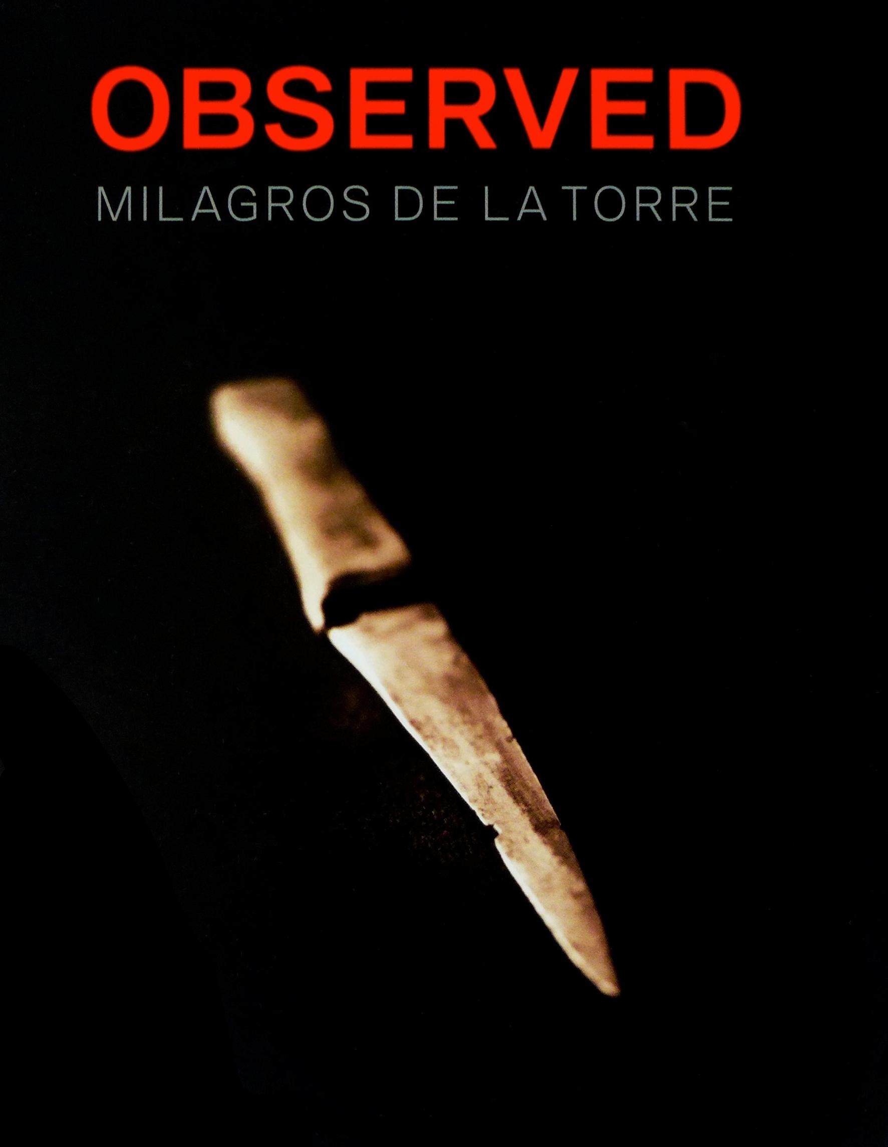 Observed: Milagros de la Torre  Indicios: Milagros de la Torre  Americas Society & Museo de Arte de Lima, MALI ISBN: 978-1-879128-41-5