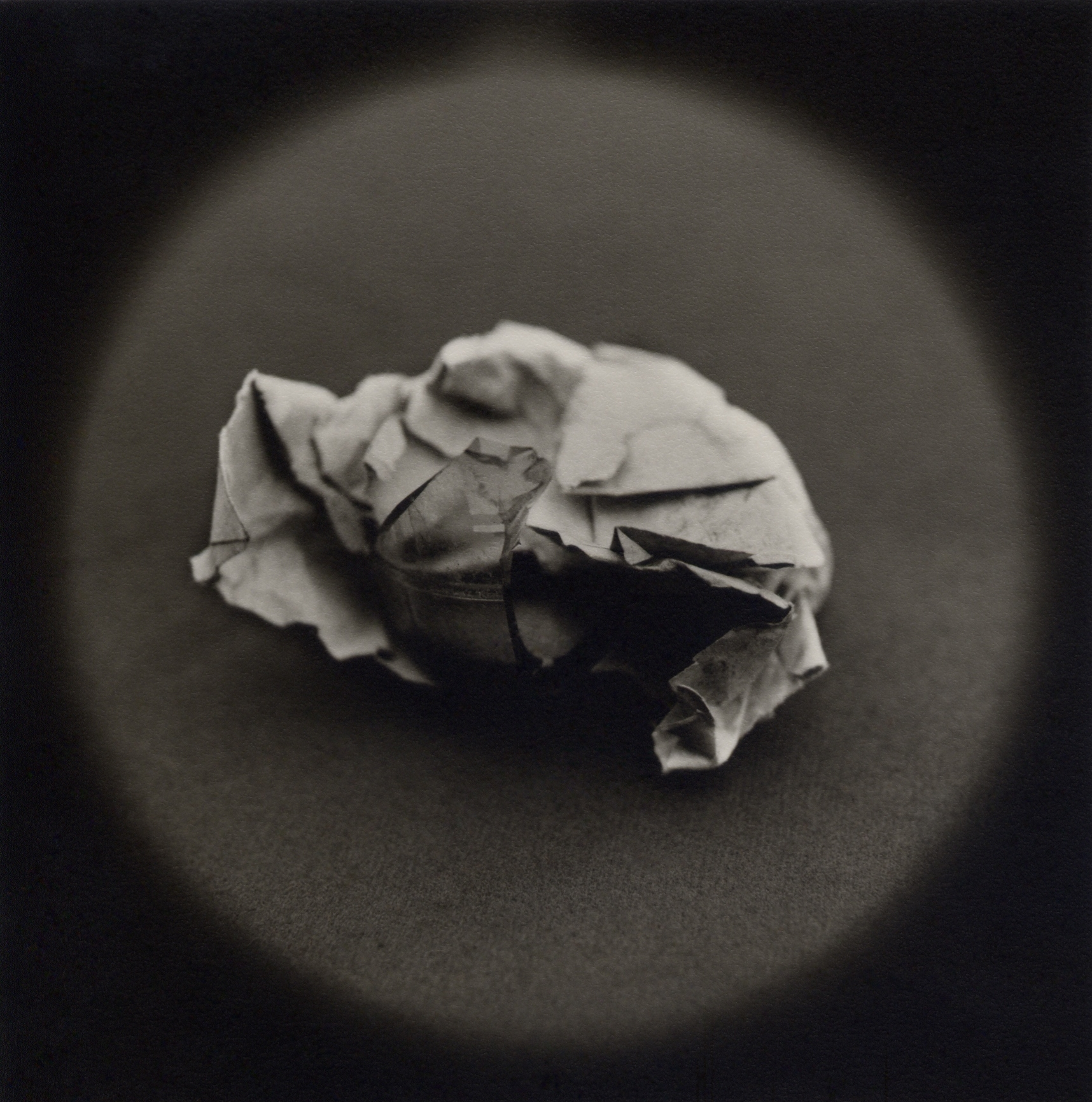 The Lost Steps (Rudimentary weapon made from broken bottle and paper)  Toned gelatin silver print. 16 x 16 in.