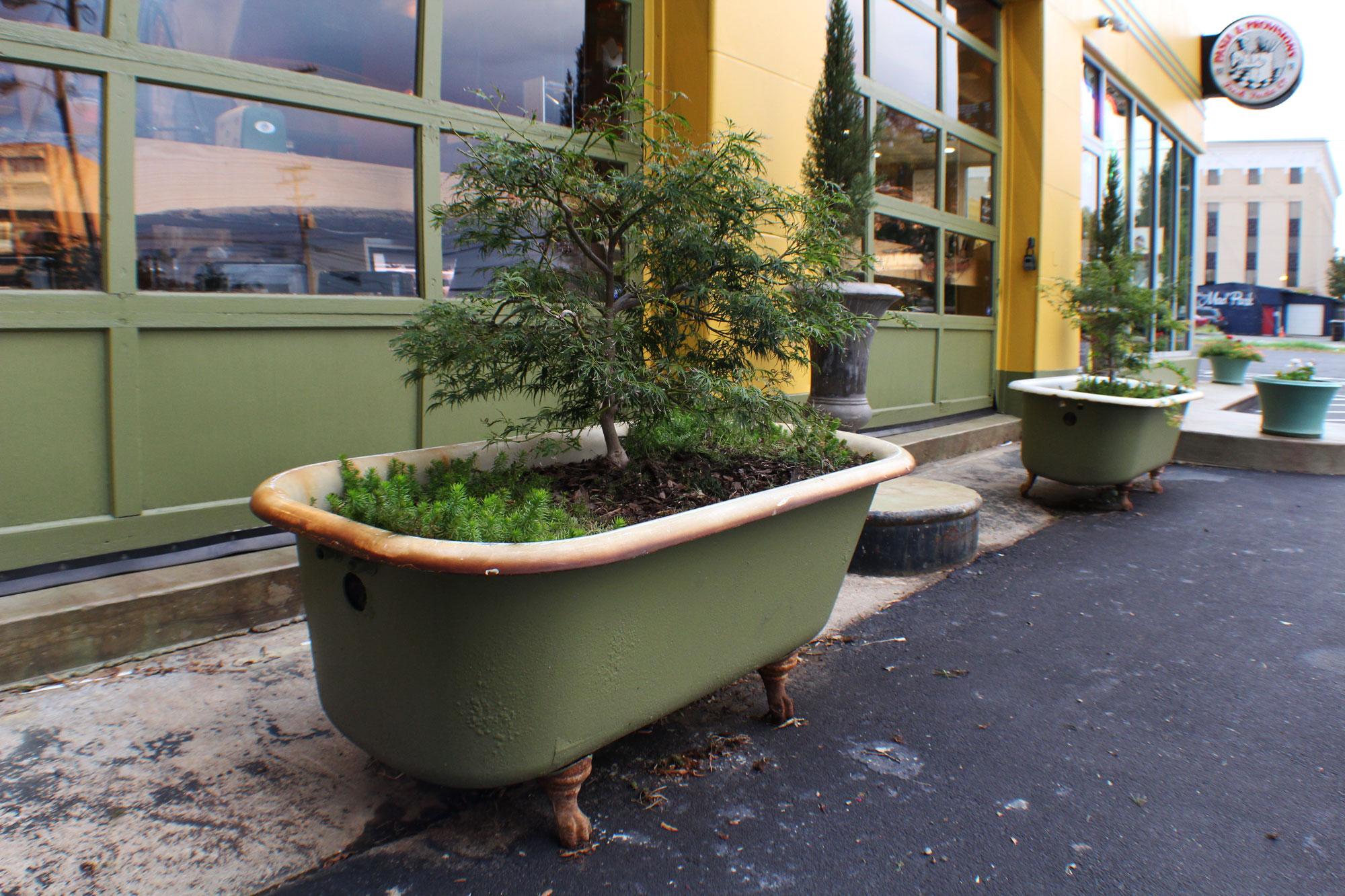 pasta_provisions_park_bonsai_tub.jpg