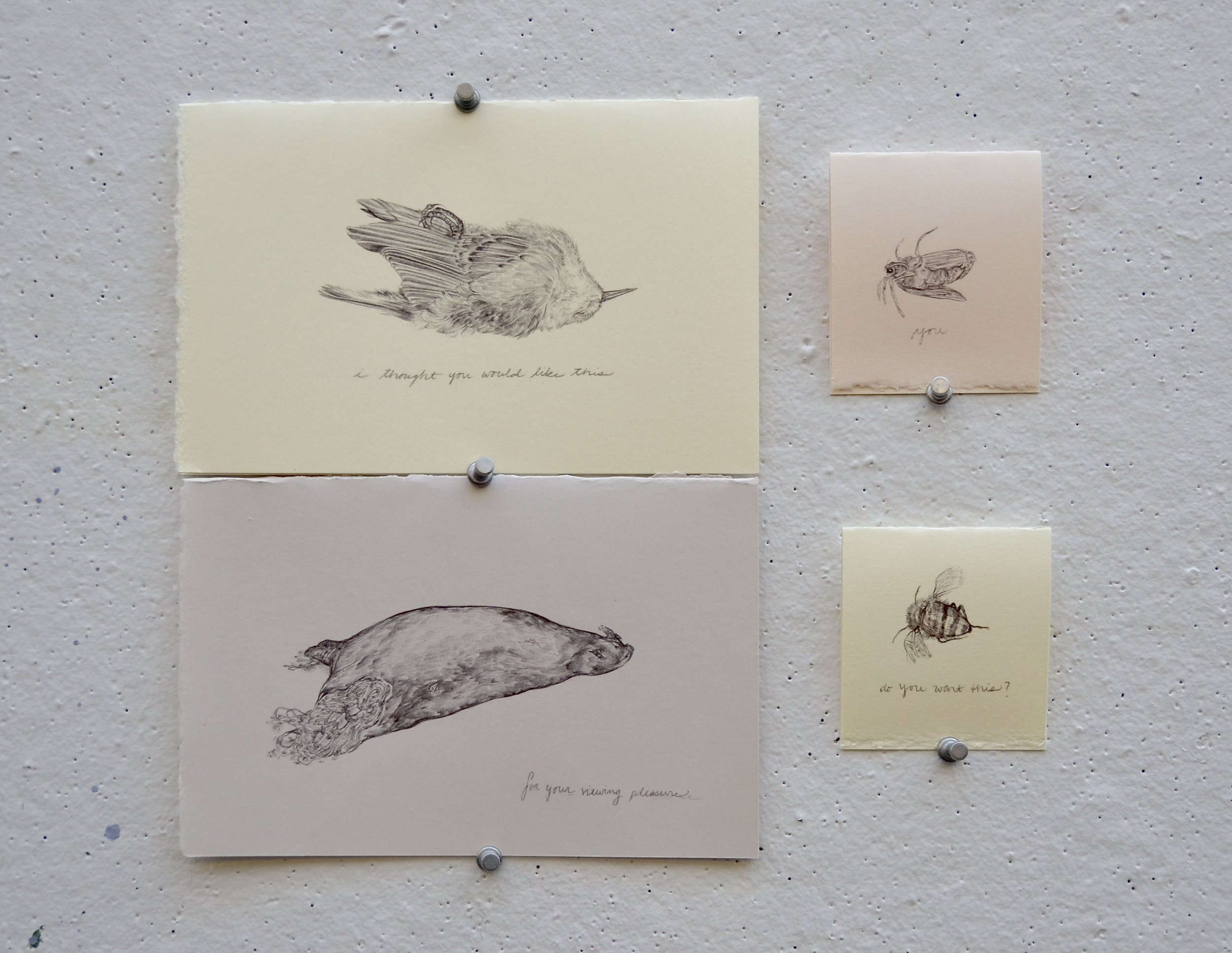 Your Finds  greeting cards, 4 0f 20 designs, ballpoint