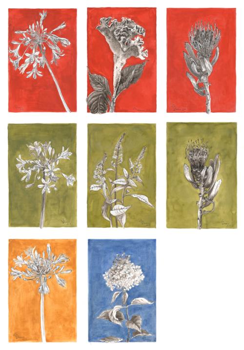 Bloemenserie  (2015)