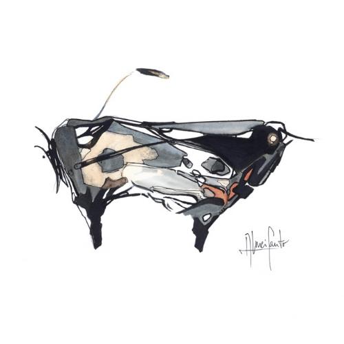 Toro Falanghina    Fine art paper, 350 gsm  acid-free, 100% cotton  17x24cm  23x30,50cm framed