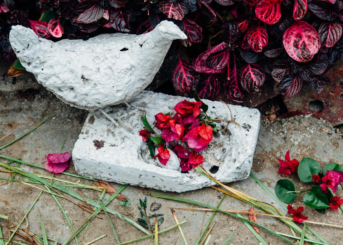 Wedding chicken © Humboldt County wedding and portrait photographer Kate Donaldson Photography