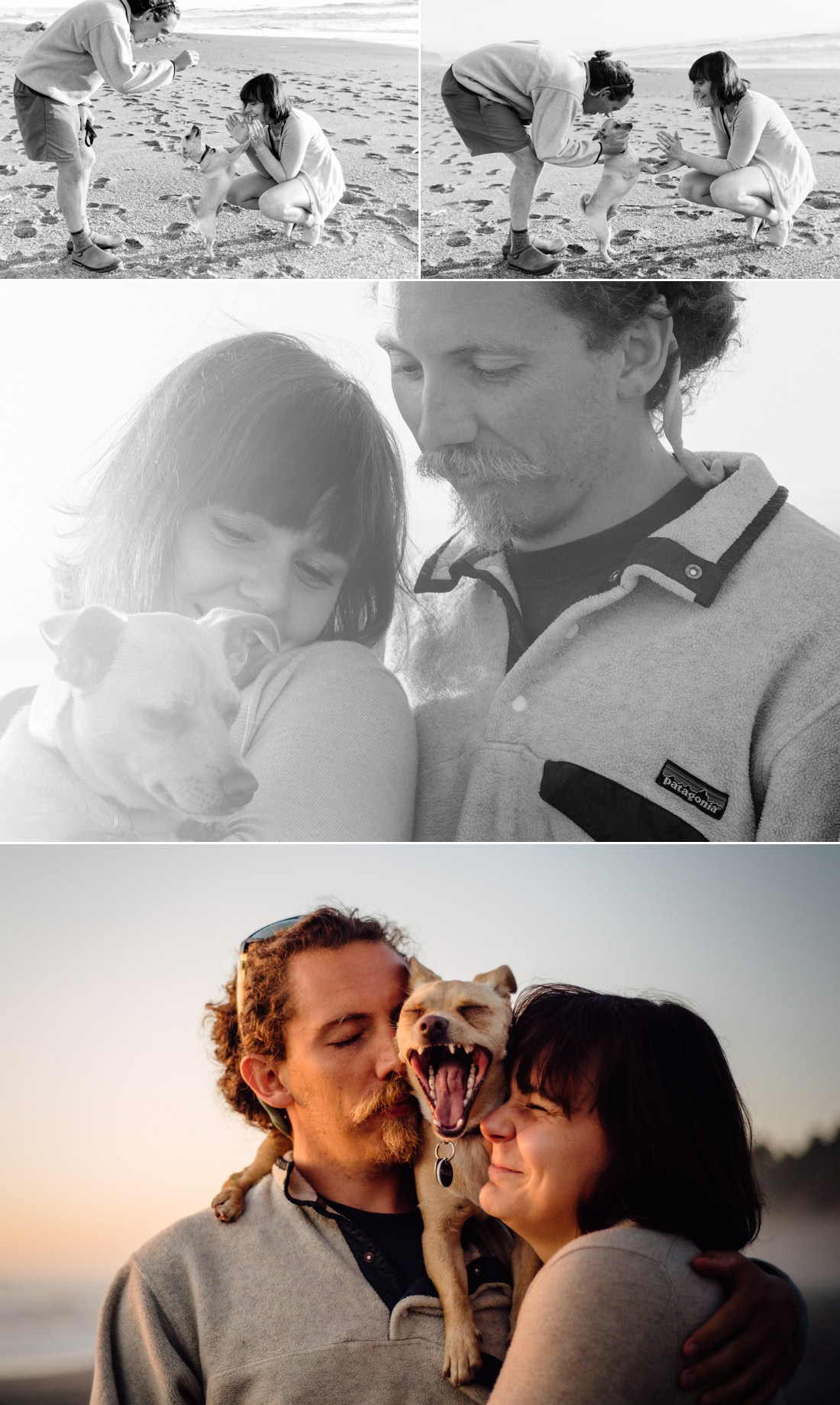 Laid back Trinidad beach engagement session in Dry Creek - complete with adorable dog. Photographed by Humboldt County Wedding Photographer Kate Donaldson Photography