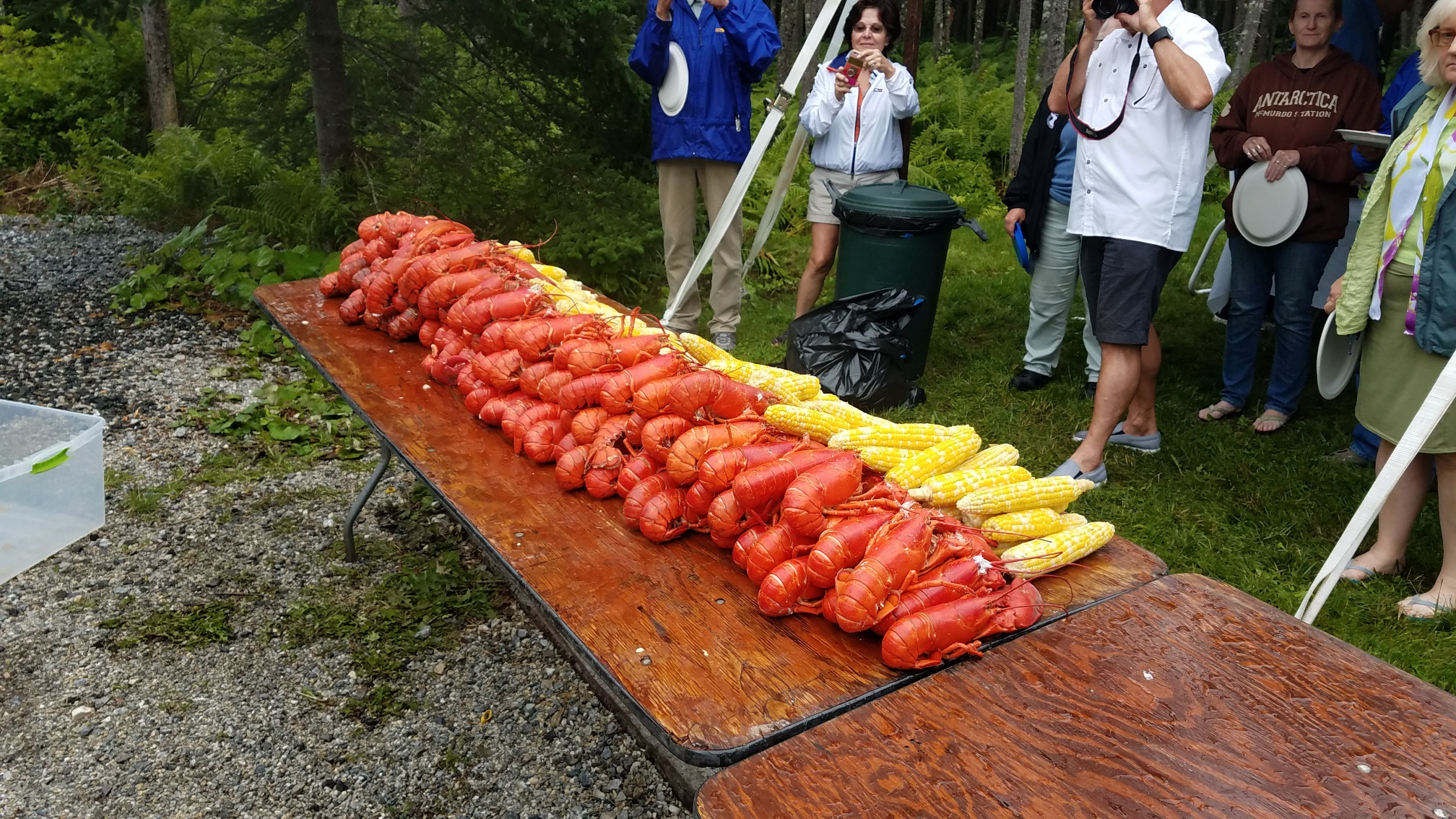 Lobsters and corn!