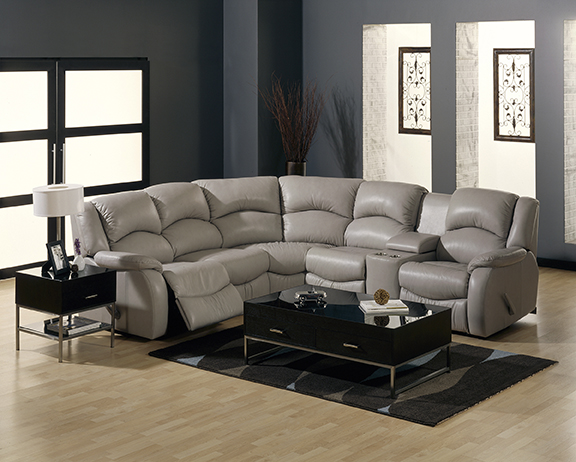 paliser-sectional.jpg