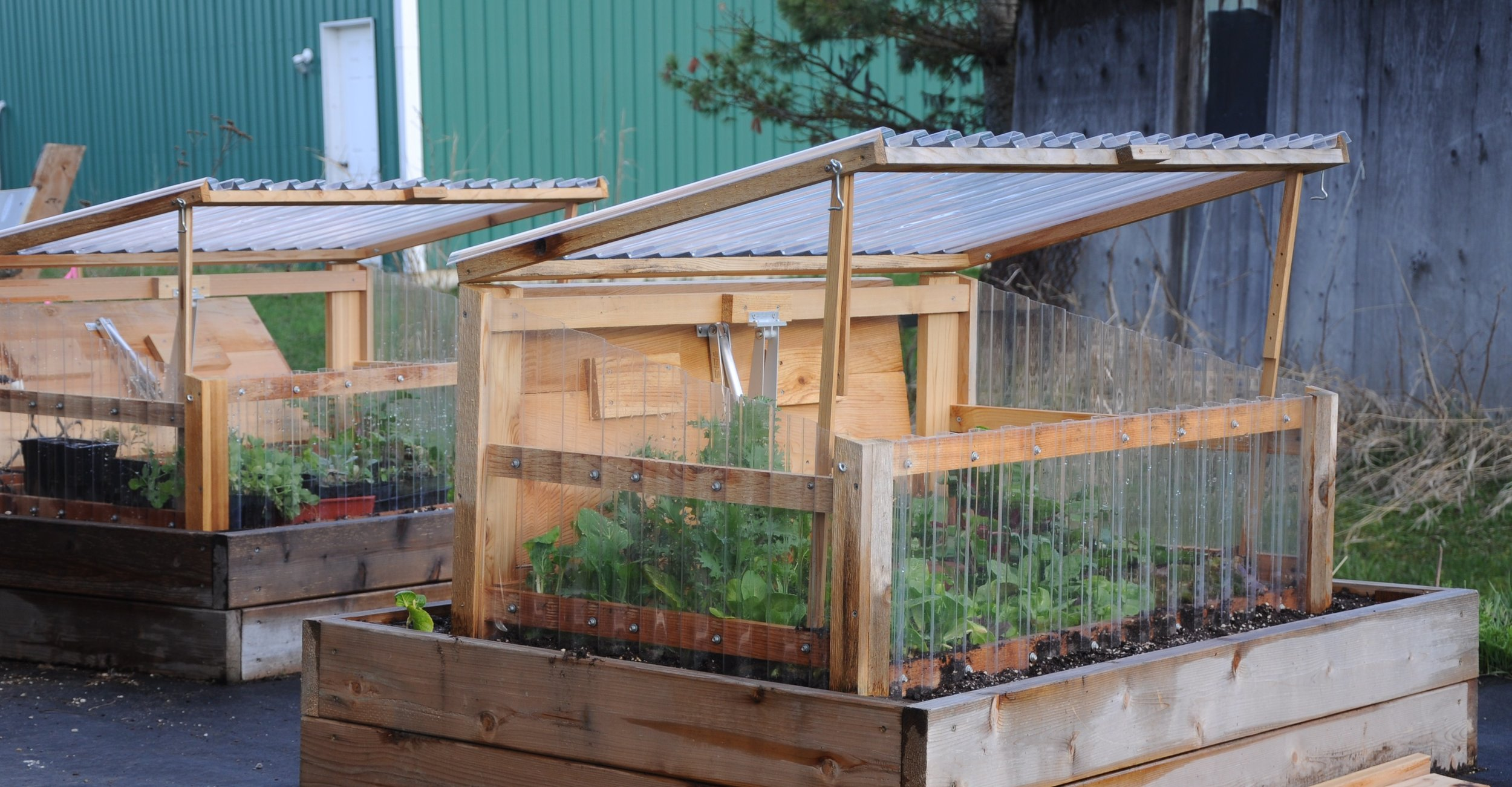 Cold Frame with Automatic Vent Opener