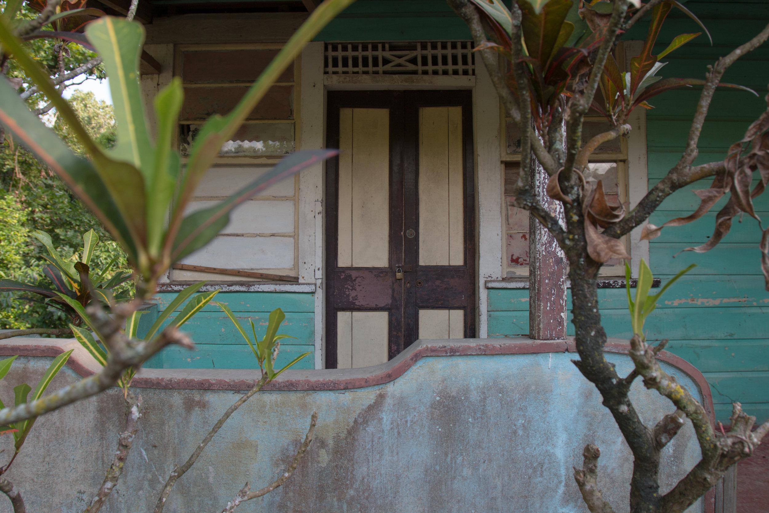 Jamaica edits for blog-24.jpg