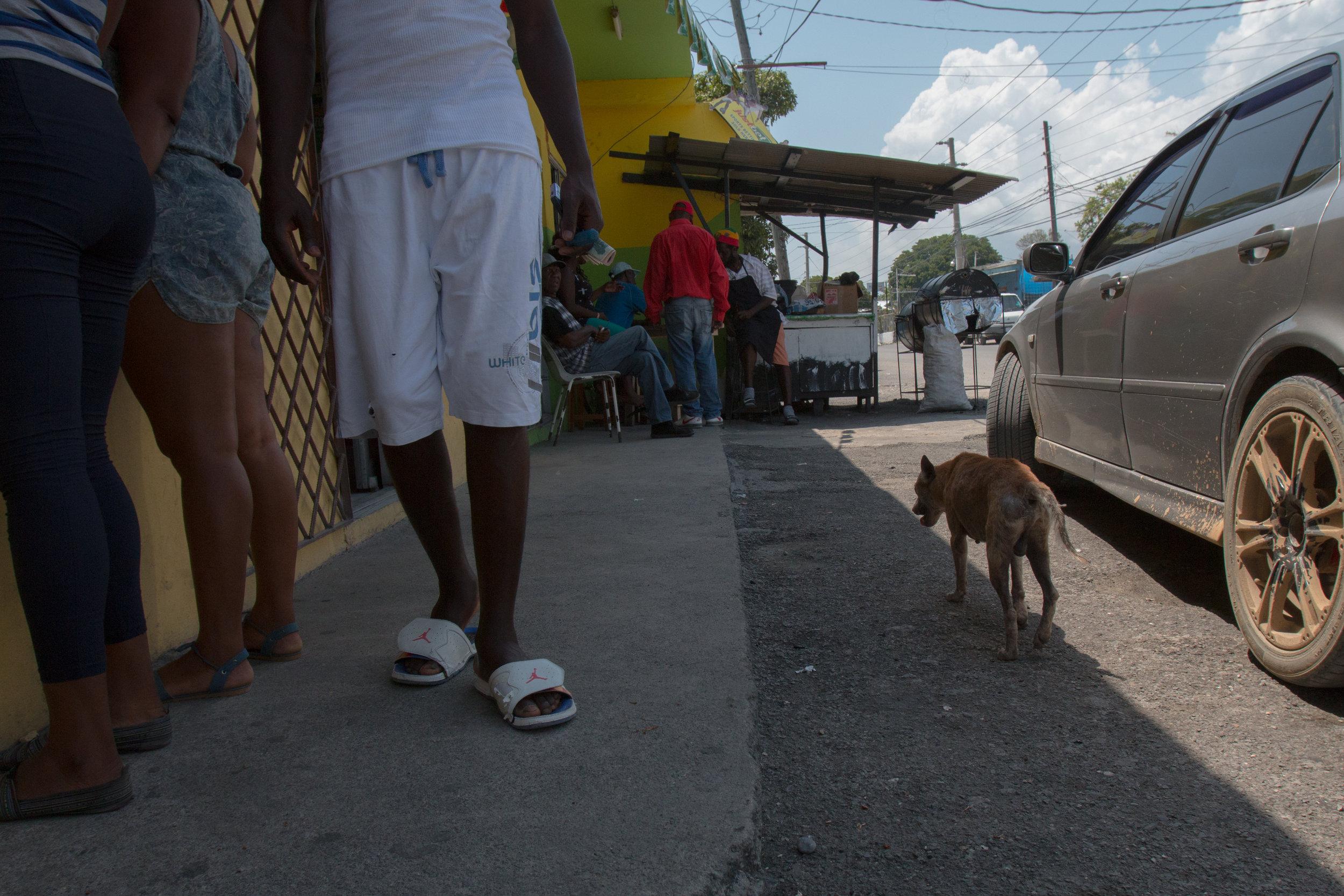 Jamaica edits for blog-14.jpg
