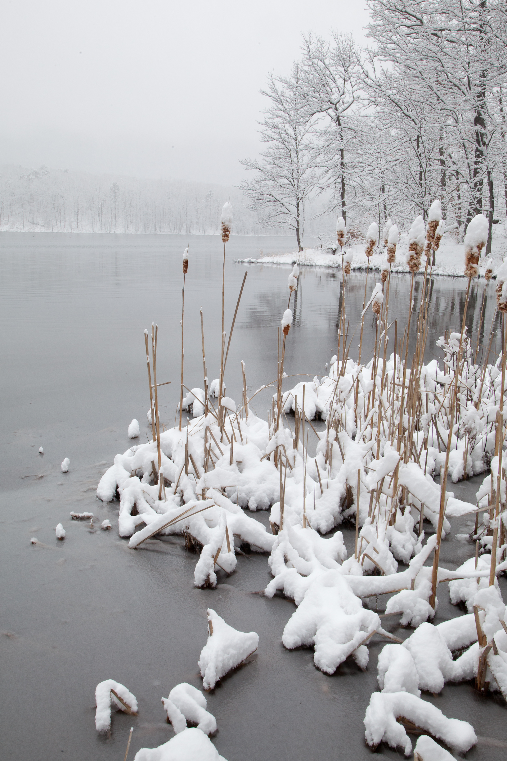 Winters Grip on Sleepy Creek Lake