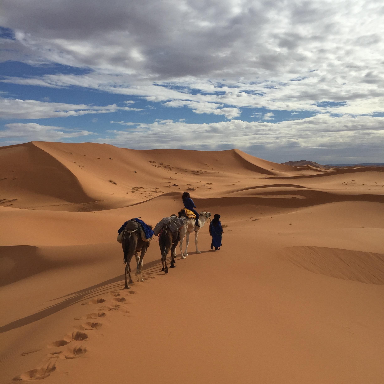 camel trekking.jpg