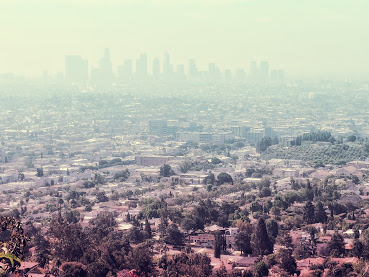 DOWNTOWN VIEW FROM RUNYON CANYON