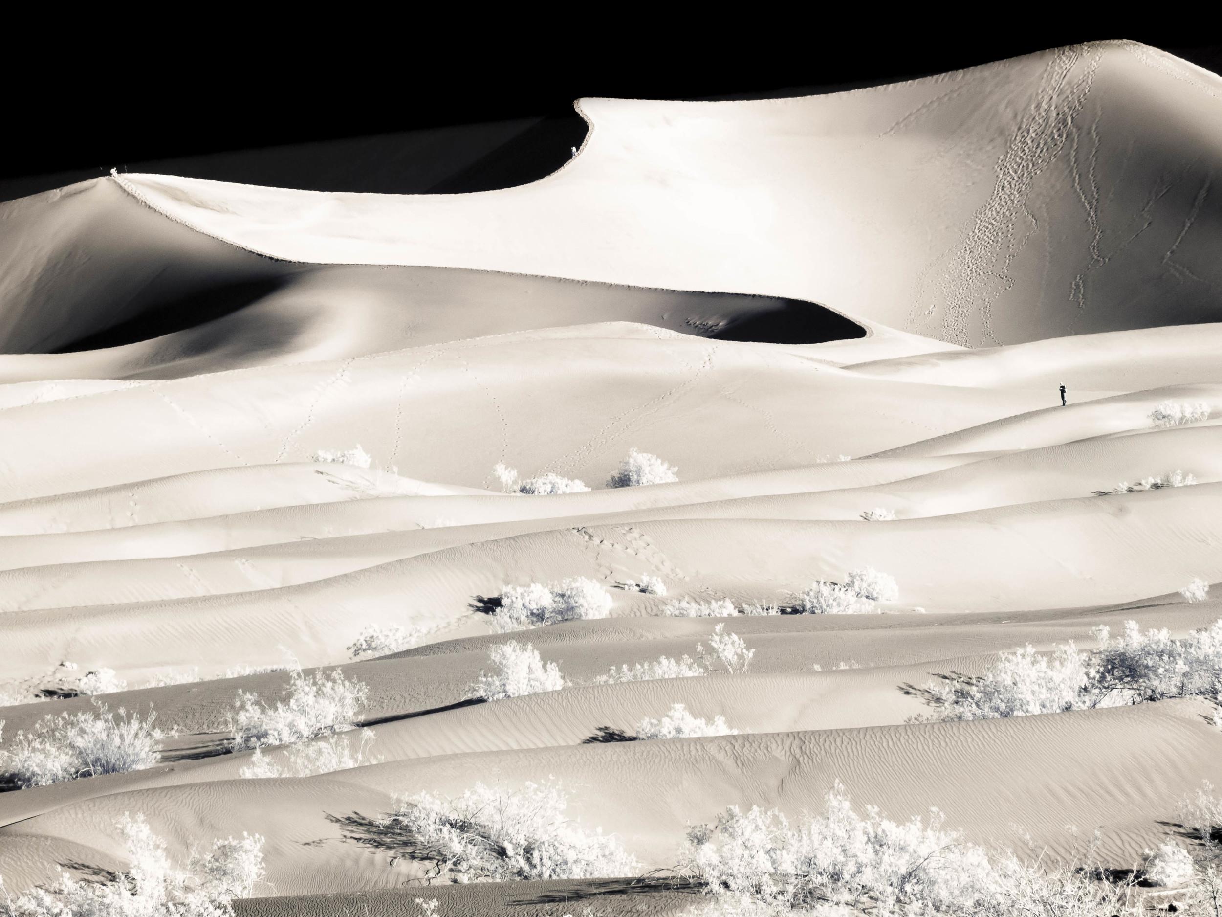 """""""Mesquite Dune"""""""