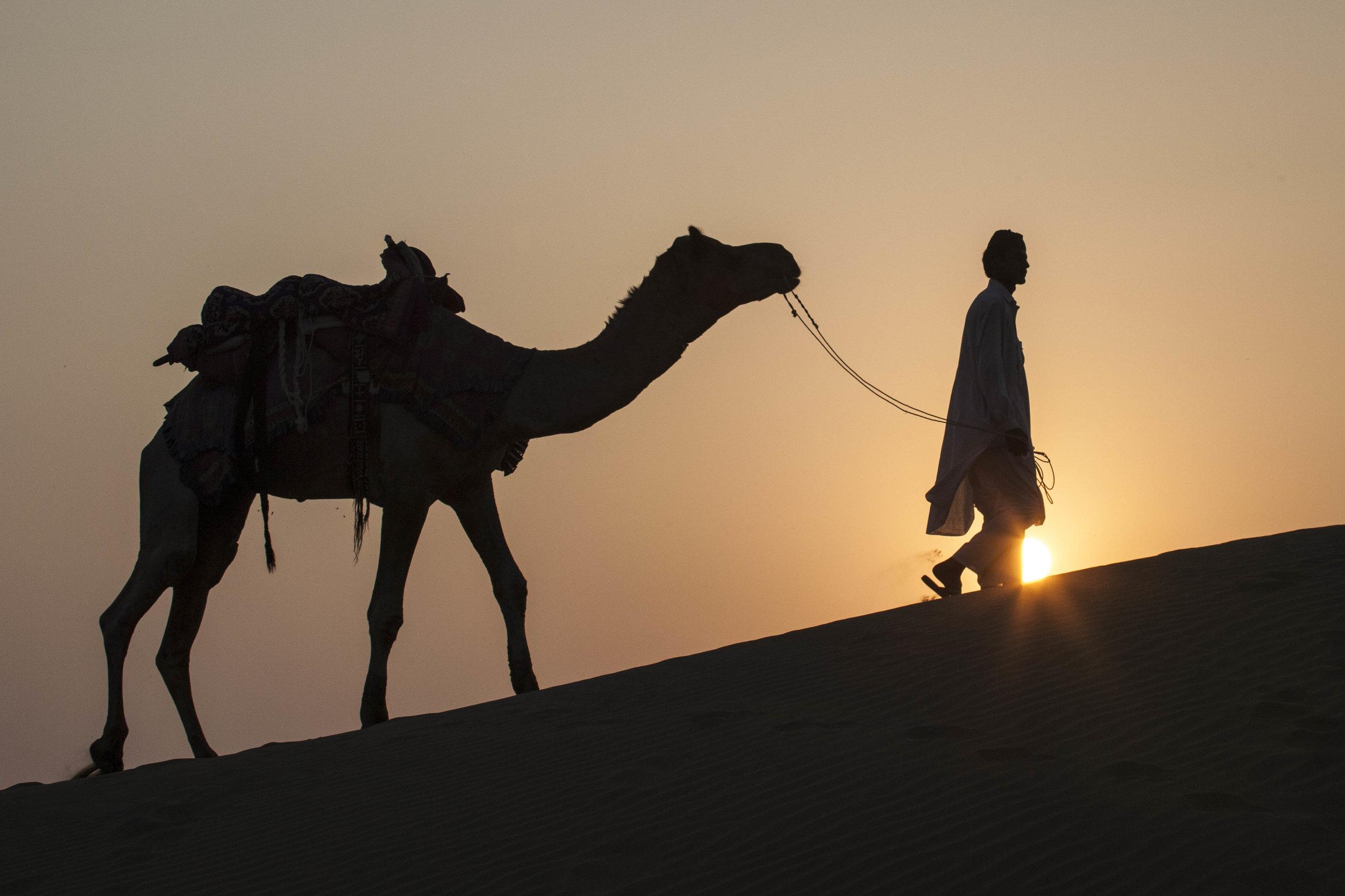 """Camel and Man at Sunset"""