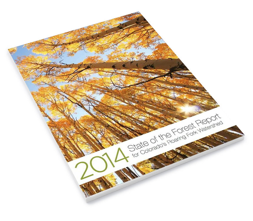 Forest-Report-Cover2014.jpg