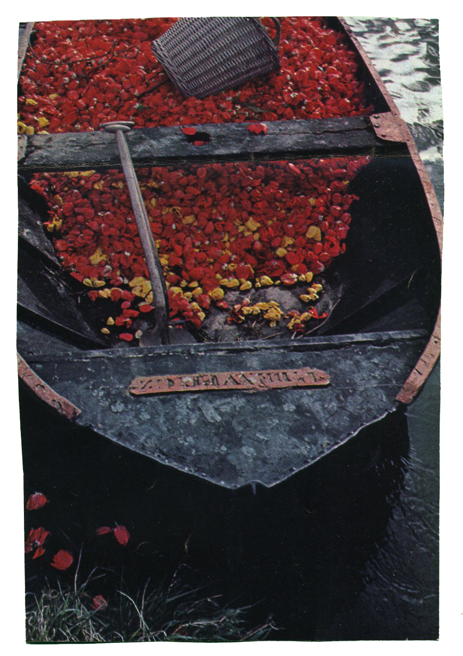 boat with flowers.jpg