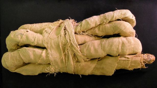 mummified-snake_0.jpg