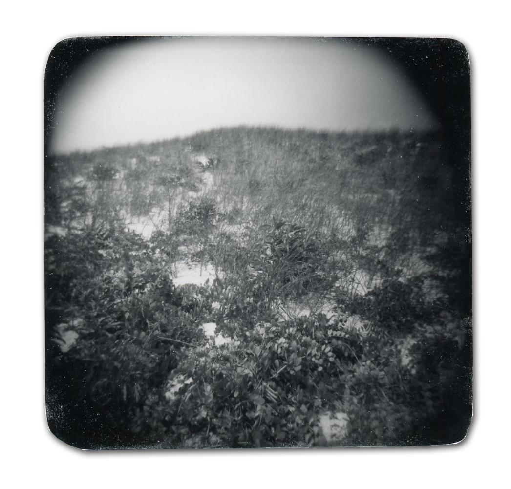 Dunes (Unique polaroid print mounted on cardstock)