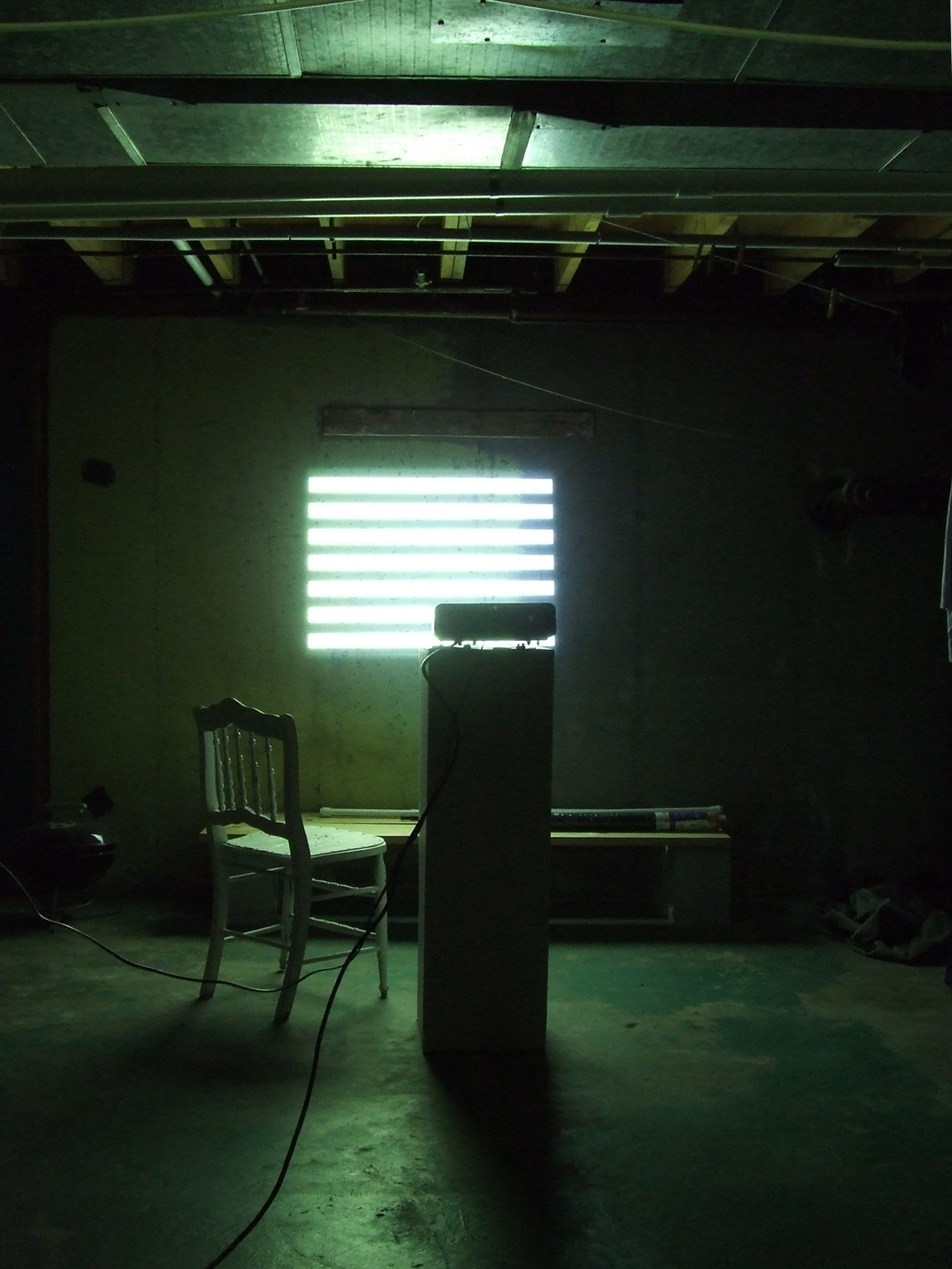 Perfect, Straight Bars of Light in my Basement (For Artists James Hampton and Donald Judd), 2009