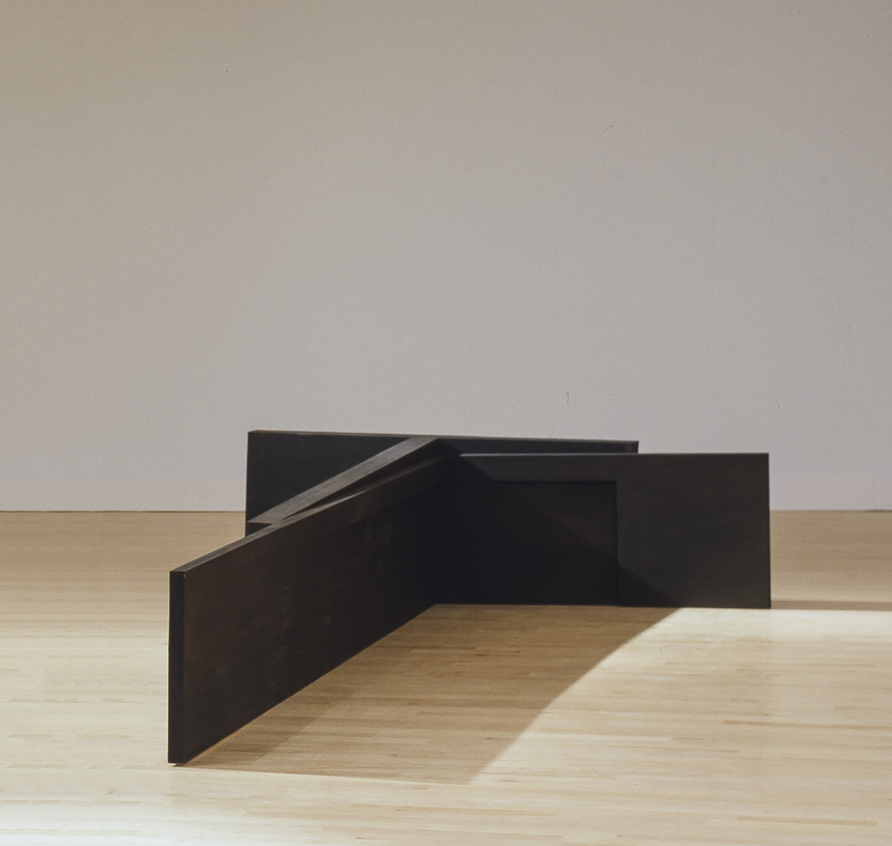 La part de l'ombre (1985 - 1986) - détail    Bois polychrome, 86.5 x 760 x 750 cm, collection du Musée national des beaux-arts du Québec