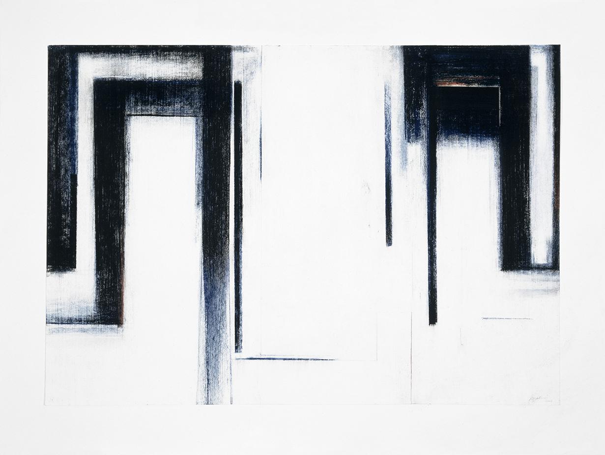 Birfucation #9  (2003)   Fusain et pastel, 45 x 70 cm, collection de l'artiste. photo : Richard-Max Tremblay