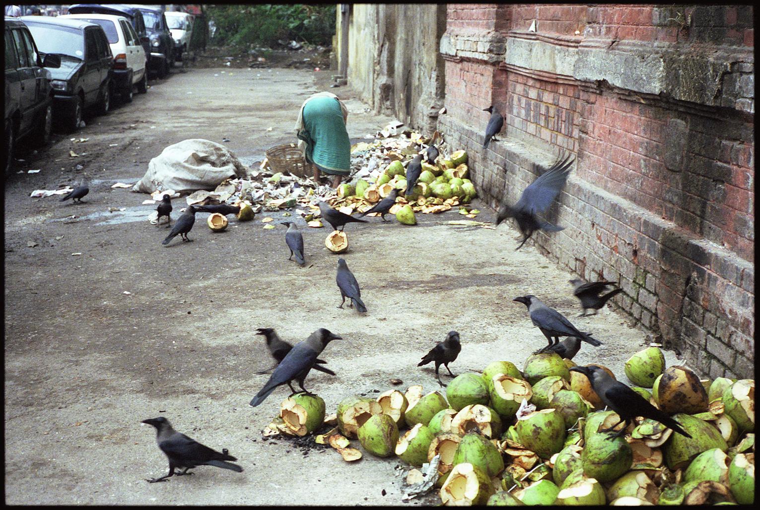 Calcutta-94.jpg