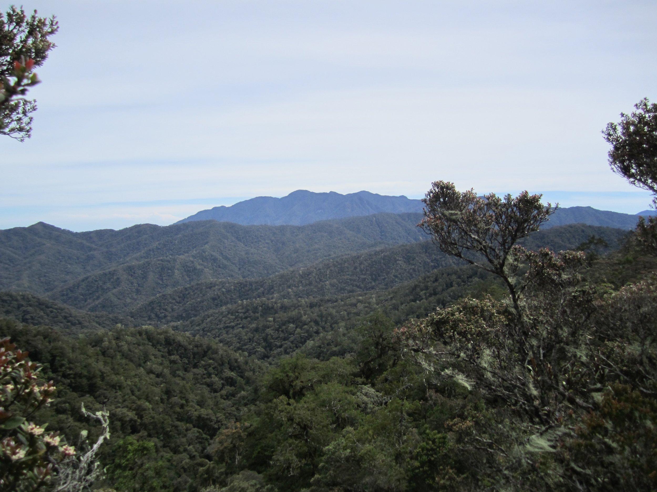 Mt. Gandangdewata