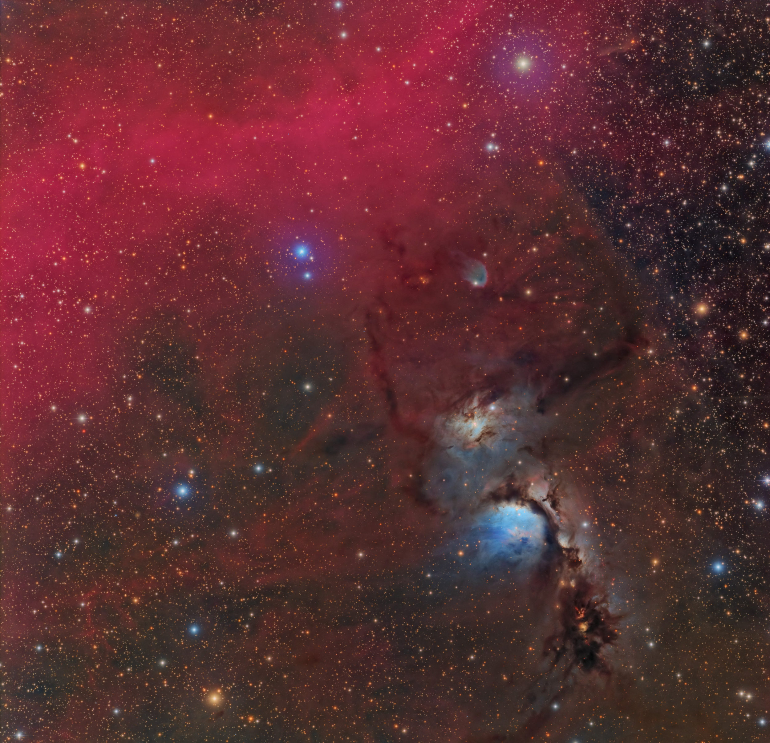 Messier 78, a reflection nebula located within the Orion constellation. This visible spectrum image shows the bright blue reflection nebula surrounded by a combination of red gas and brown dust known as Barnard's Loop. Photo Credit: Connor Matherne, LSU.