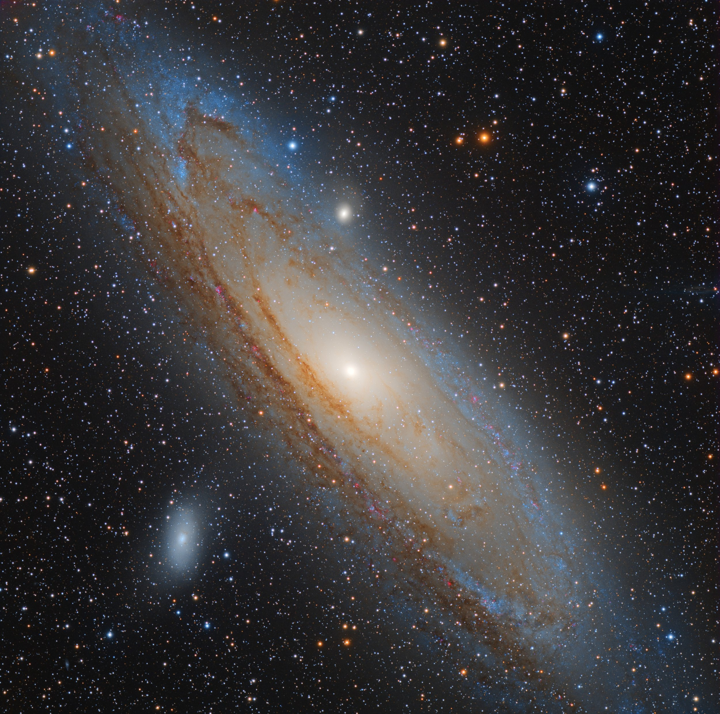 Andromeda Galaxy. Photo Credit: Connor Matherne, LSU.