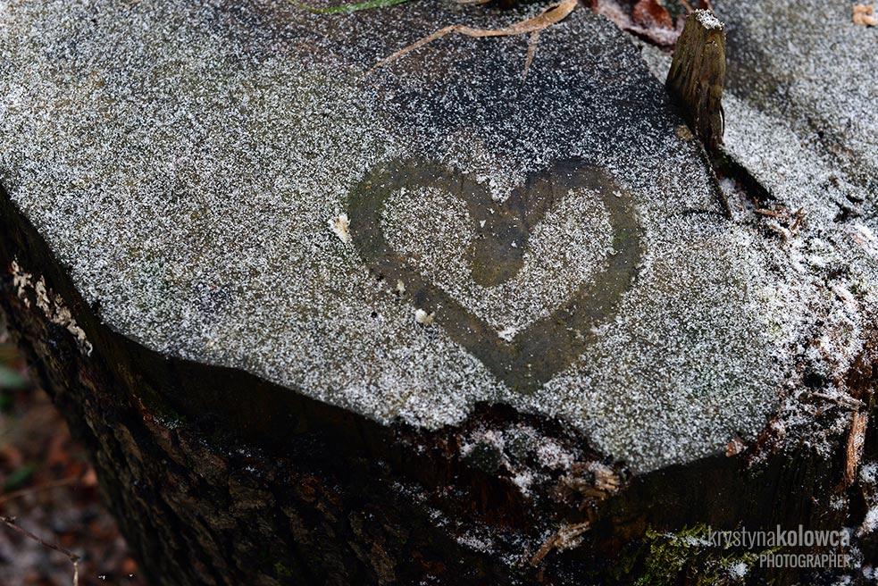 kolowca-bieszczady-winter-heart.jpg