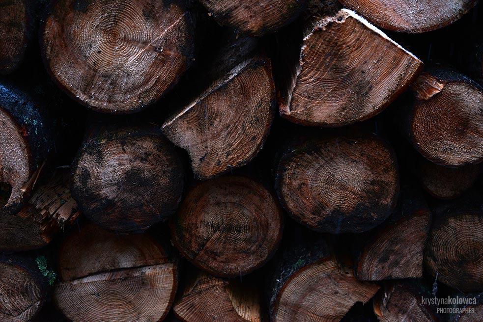kolowca-bieszczady-wood.jpg