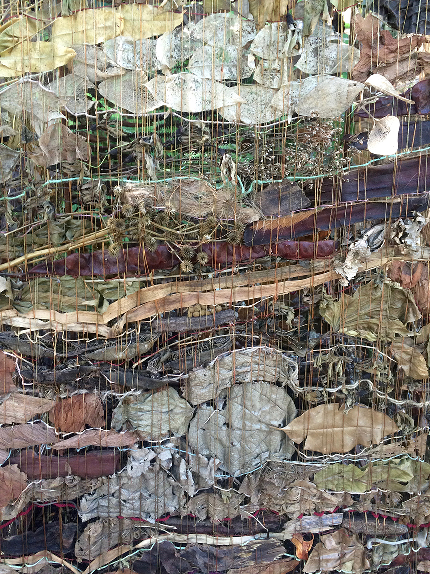 dried art in the botanical gardens - Valencia