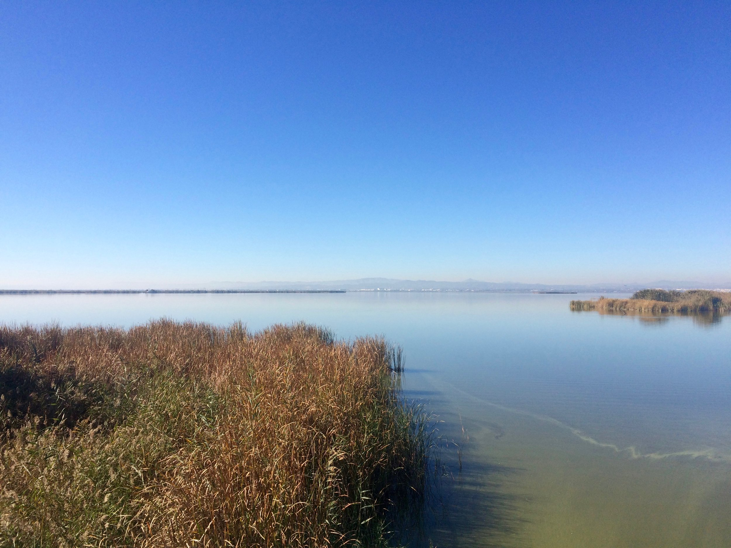 Albufera National Park - just outside of Valencia