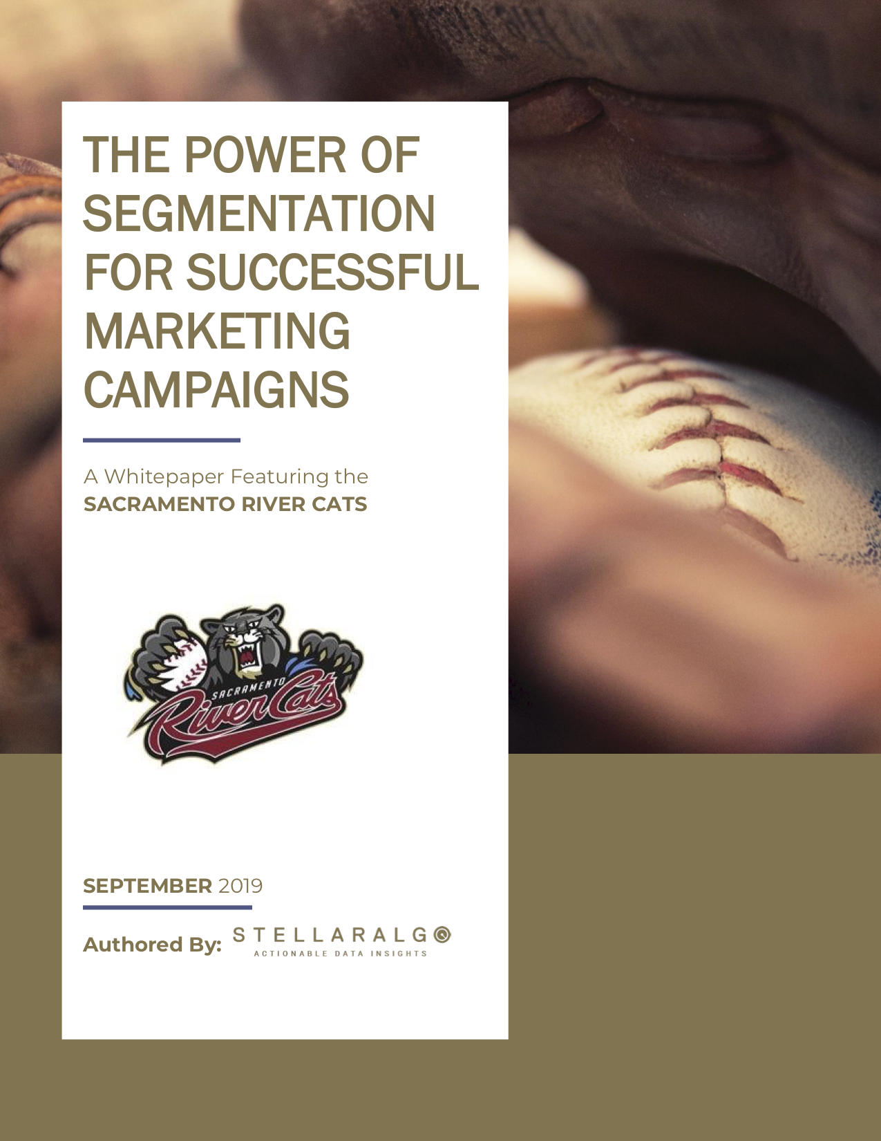 StellarAlgo - The Power of Segmentation for Successful Marketing Campaigns-Graphic.png