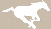 calgary-stampeders-gold.png