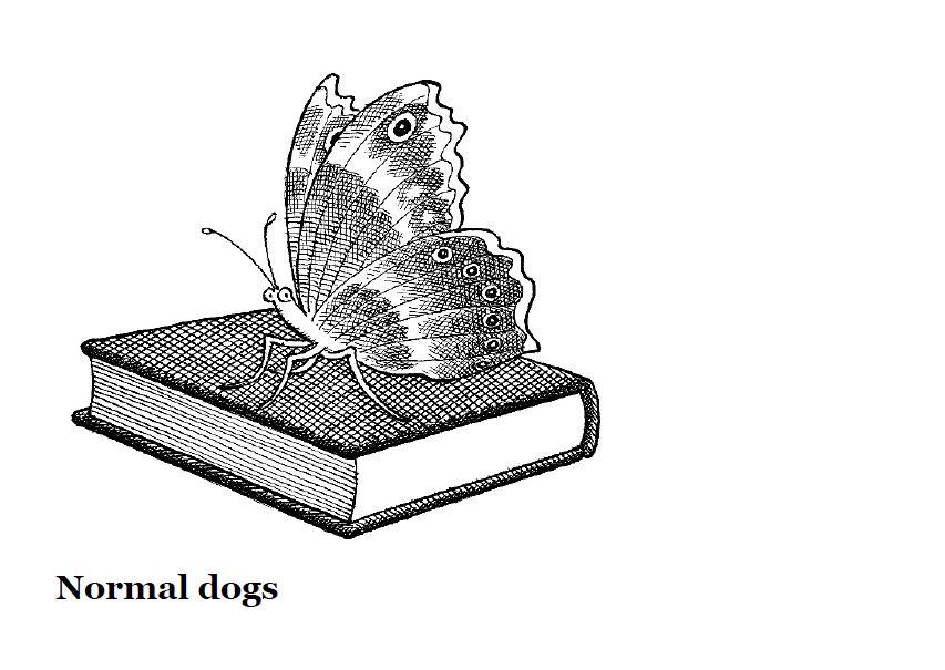 Normal Dogs pg 1.JPG
