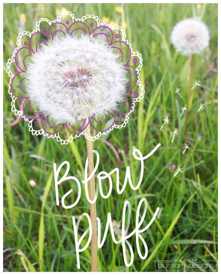 """Growing up, my sisters and I called these types of Dandelions """"blow puffs"""" ♥"""