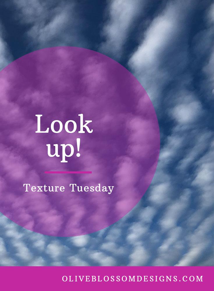 Texture-Tuesday.jpg