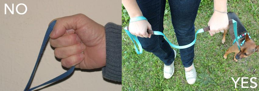leash holding.jpg