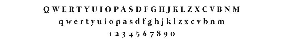 Maydew-Logo-Nov2017_10.jpg