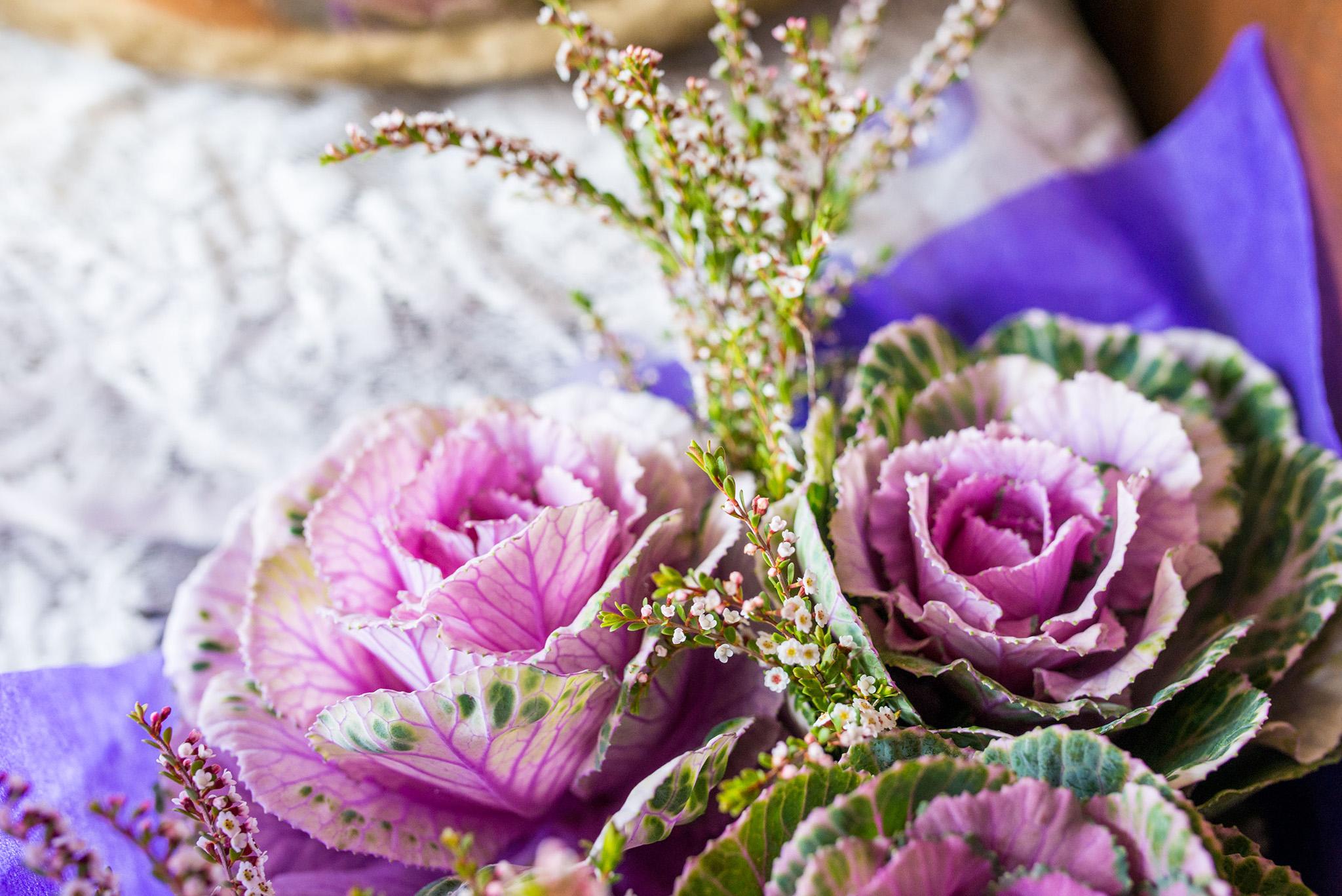 ingleside flowers1.jpg