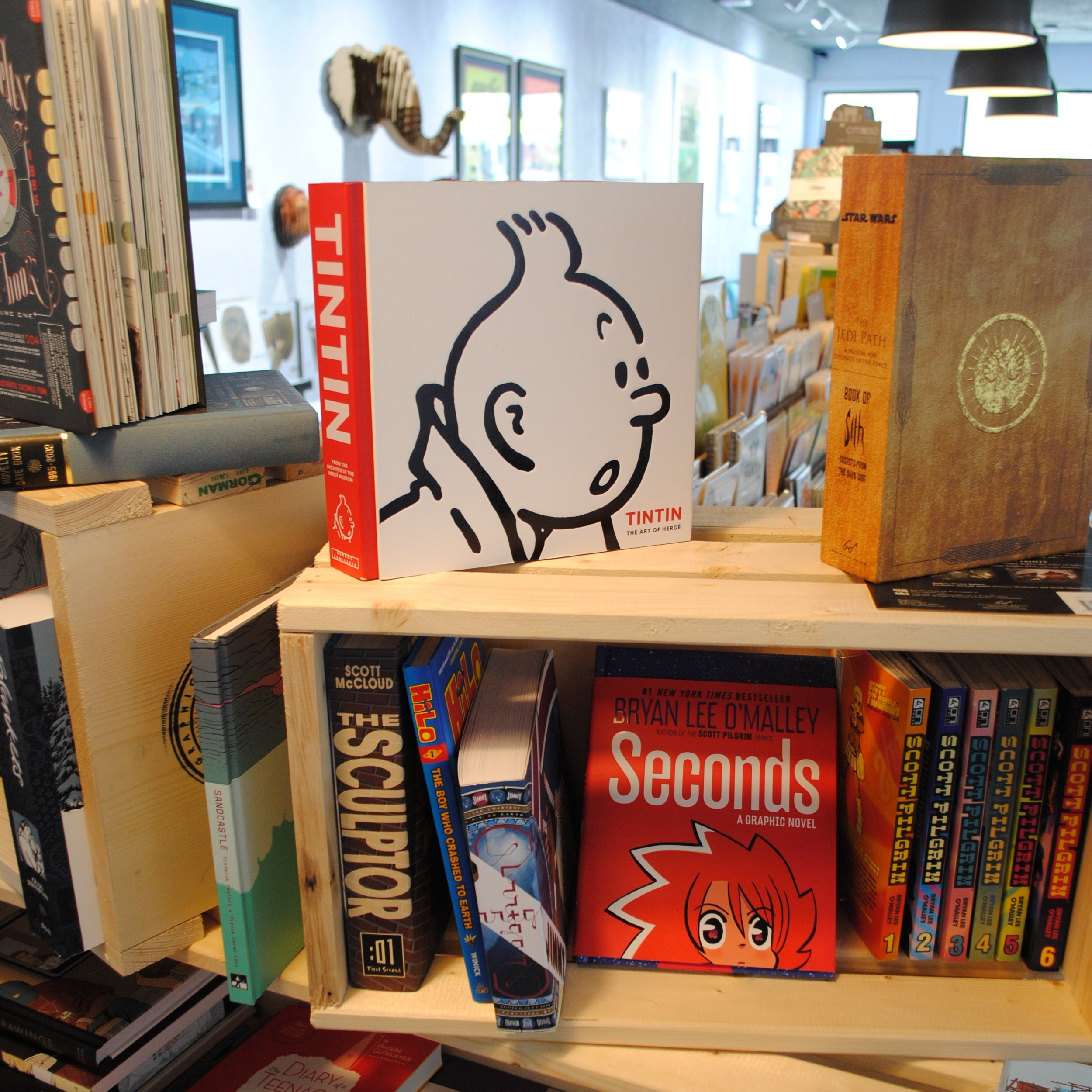 Graphic Novels at The Prints and the Paper in Edmonton on 124 street