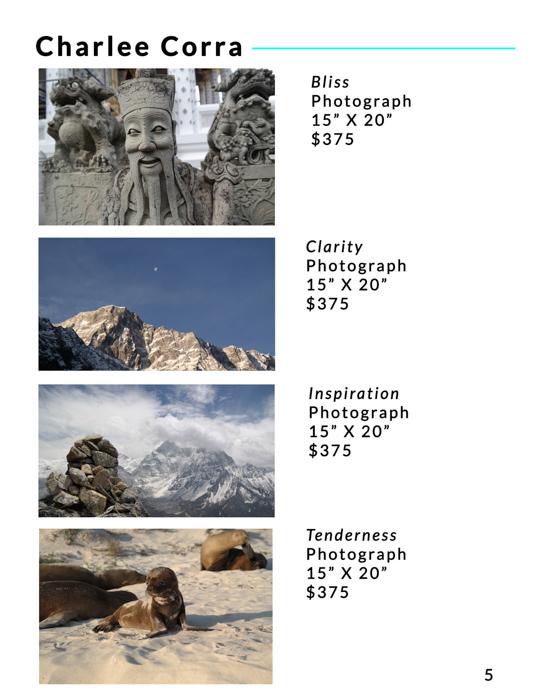 BTLG-DEC-Catalog-4.jpg