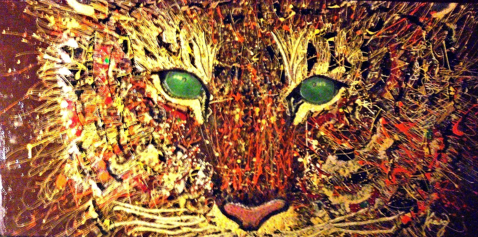 Cat_eyes.jpg
