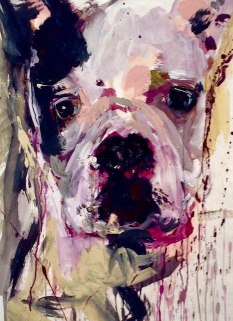 Pitbull_bulldog_mix.jpg