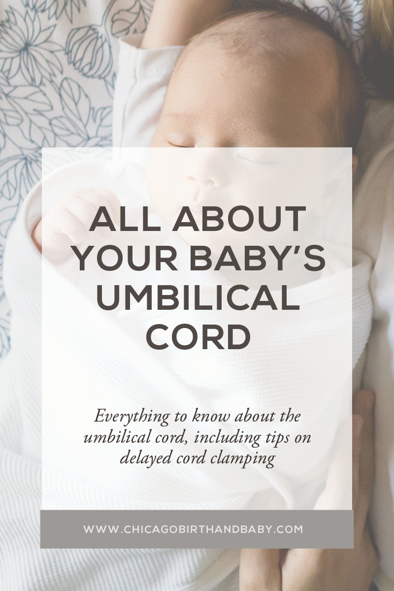 All About Your Baby's Umbilical Cord - What you should know about the umbilical cord and delayed cord clamping
