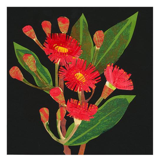 flowering gum.jpg