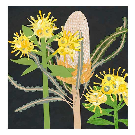 Acorn-BanksiaSm.jpg